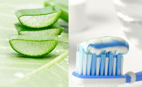 trị mụn bằng nha đam và kem đánh răng