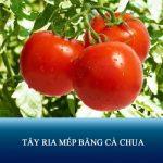 Review 6 cách tẩy ria mép bằng cà chua hiệu quả chỉ 5″ mỗi ngày tại nhà
