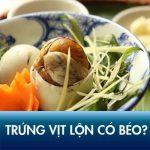 Ăn trứng vịt lộn có béo không? Bí kíp ăn hột vịt lộn không tăng cân