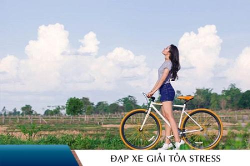 giai-toa-stress