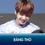 Làm răng thỏ – Hot trend Hàn Quốc được giới trẻ lăng xê nhiệt tình
