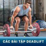 Deadlift là gì? Hướng dẫn tập deadlift đúng cách, hiệu quả nhất